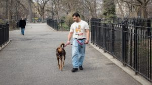NYC dog walker Martin